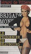 Télécharger le livre :  Le Prisonnier de Beaubourg