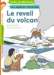 Téléchargez le livre :  Le réveil du volcan