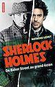 Télécharger le livre : Sherlock Holmes