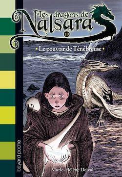 Les dragons de Nalsara, Tome 19