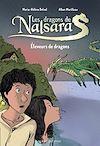 Télécharger le livre :  Les dragons de Nalsara compilation, Tome 01