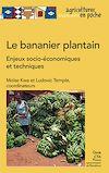 Télécharger le livre :  Le bananier plantain