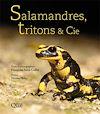 Télécharger le livre :  Salamandres, tritons & Cie
