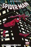 Télécharger le livre :  Spider-Man - L'étrangère aux cheveux roux