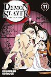 Télécharger le livre :  Demon Slayer T11