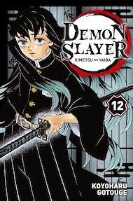Téléchargez le livre :  Demon Slayer T12