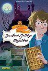 Télécharger le livre :  CHEFS - Gaufres, collège et mystère - Tome 1