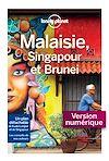 Télécharger le livre :  Malaisie, Singapour et Brunei - 9ed