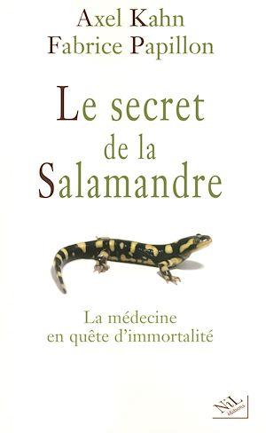 Téléchargez le livre :  Le secret de la salamandre