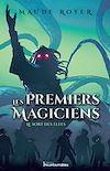 Télécharger le livre :  Les premiers magiciens - Le sort des elfes