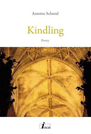 Téléchargez le livre :  Kindling