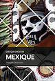 Télécharger le livre : Quelque chose du Mexique