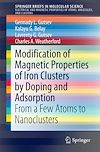 Modification of Magnetic Properties of Iron Clusters by Doping and Adsorption