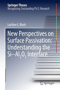 New Perspectives on Surface Passivation: Understanding the Si-Al2O3 Interface