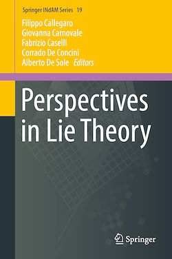 Perspectives in Lie Theory