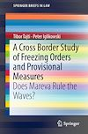 Download this eBook A Cross Border Study of Freezing Orders and Provisional Measures