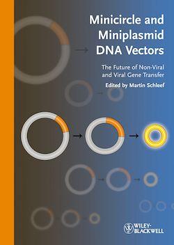 Minicircle and Miniplasmid DNA Vectors