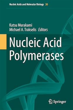 Nucleic Acid Polymerases