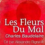 Les Fleurs du Mal | Baudelaire, Charles