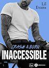 Télécharger le livre :  Inaccessible - Crash & Burn - Teaser
