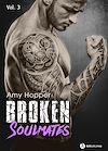 Télécharger le livre :  Broken Soulmates - Volume 3