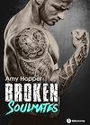Télécharger le livre :  Broken Soulmates - Teaser