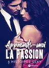 Télécharger le livre :  Apprends-moi la passion – 3 histoires sexy