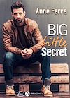 Télécharger le livre :  Big Little Secret