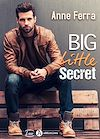 Télécharger le livre :  Big Little Secret - Teaser