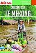 Télécharger le livre : CROISIÈRE SUR LE MEKONG 2019 Carnet Petit Futé