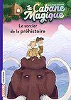 Télécharger le livre :  La cabane magique, Tome 06