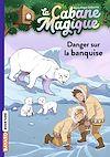Télécharger le livre :  La cabane magique, Tome 15