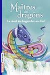 Télécharger le livre :  Maîtres des dragons, Tome 10