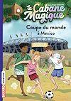 Télécharger le livre :  La cabane magique, Tome 47