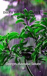 Download this eBook Dans la tourmente d'un déluge
