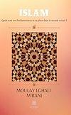 Télécharger le livre :  Islam