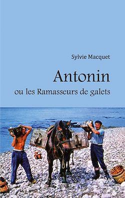 Download the eBook: Antonin ou les Ramasseurs de galets