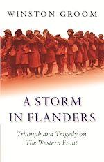 Télécharger le livre :  A Storm in Flanders