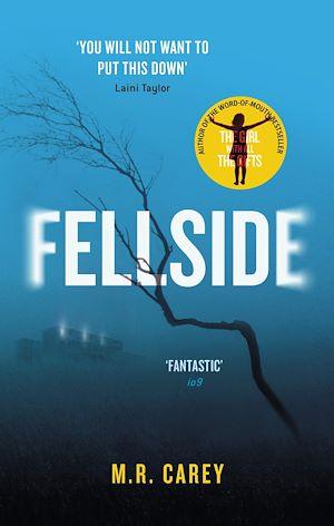 Téléchargez le livre :  Fellside