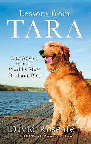 Téléchargez le livre :  Lessons from Tara