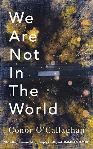 Téléchargez le livre :  We Are Not in the World