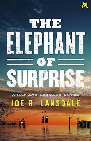Téléchargez le livre :  The Elephant of Surprise