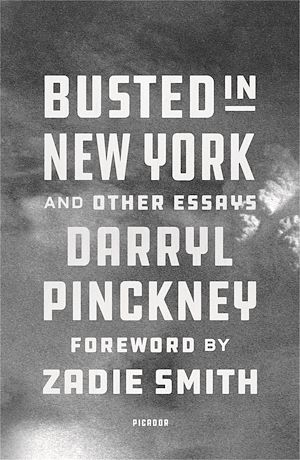 Téléchargez le livre :  Busted in New York & Other Essays