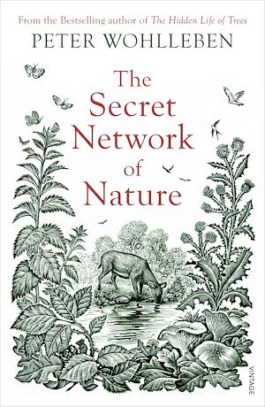 Téléchargez le livre :  The Secret Network of Nature