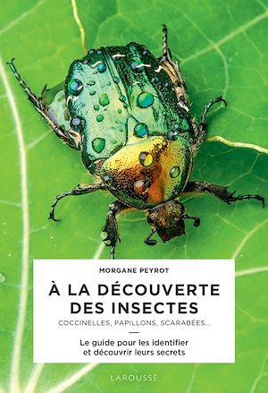 Téléchargez le livre :  A la découverte des insectes