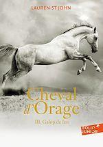 Télécharger le livre :  Cheval d'Orage (Tome 3) - Galop de feu