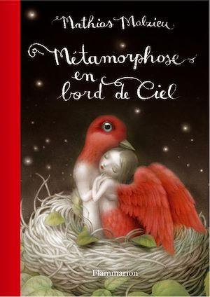 Téléchargez le livre :  Métamorphose en bord de ciel - Edition de luxe