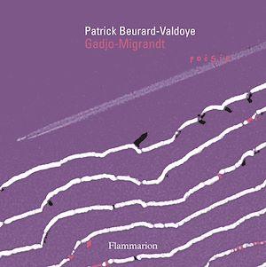 Téléchargez le livre :  Gadjo-Migrandt