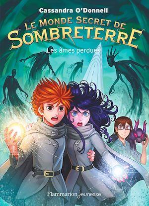 Téléchargez le livre :  Le Monde secret de Sombreterre (Tome 3) - Les âmes perdues