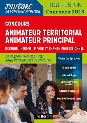 Téléchargez le livre :  Concours Animateur territorial, animateur principal - Concours 2019